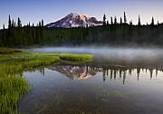 Mt Rainier Prints - Majestic Dawn Print by Mike  Dawson