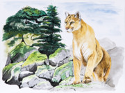 Mountain Lion Framed Prints - Majestic Domain Framed Print by Joette Snyder