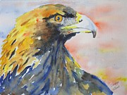 Corynne Hilbert - Majestic Golden Eagle