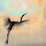 Prank Prints - Majestic in Flight Print by Shabbir Degani
