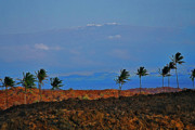 Mauna Kea Photo Metal Prints - Majestic Mauna Kea Metal Print by Bette Phelan