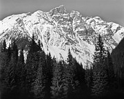 Black And White Photography Metal Prints - Majestic Mountains, British Columbia, Canada Metal Print by Brian Caissie