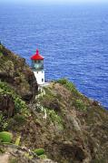 Makapuu Prints - Makapuu Lighthouse I Print by Brandon Tabiolo - Printscapes