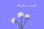 Children Digital Art Metal Prints - Make A Wish Metal Print by Methune Hively
