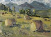 Cottonwood Paintings - Make Hay While the Sun Shines Study by Zanobia Shalks