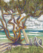 Surfing Art Posters - Malaekahana Tree Poster by Patti Bruce - Printscapes