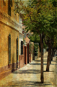 Malaga Photos - Malaga Street. Spain by Jenny Rainbow