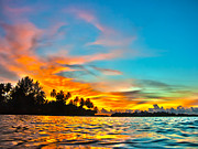 Palmtree Posters - Maldives sunset Poster by MotHaiBaPhoto Prints