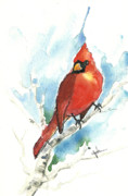 Northern Cardinal Posters - Male Cardinal Poster by Christine Kane