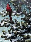 Winter Scene Painting Originals - Male Cardinal by Mark Mittlesteadt