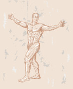 Muscular Digital Art Posters - Male Human Anatomy Poster by Aloysius Patrimonio