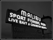 Ocean Scenes Posters - Malibu Pier Sign In BW Poster by Glenn McCarthy Art and Photography