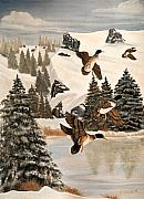 Eileen Blair - Mallards In Flight