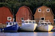 Boathouse Row Photos - Malpeque Harbour, Prince County, Prince by Ron Watts