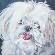 Maltese Puppy Framed Prints - Maltese Framed Print by Lee Ann Shepard