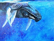 Kauai Artist Paintings - Mama and baby whale by Tamara Tavernier