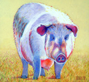 Pig Framed Prints - Mama is Comin II Framed Print by Christine Belt