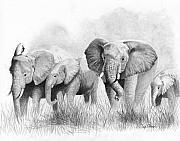 Elephants Drawings - Mama Says by Phyllis Howard