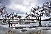 Marina Park Photos - Mamaroneck Harbor In Winter by June Marie Sobrito