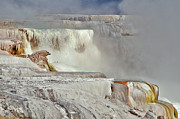 Yellowstone National Park Photos - Mammoth Hot Spring Terraces by Photo By Daryl L. Hunter - The Hole Picture