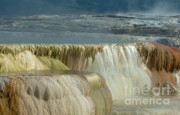 Geysers Photos - Mammoth Hot Springs - Yellowstone by Sandra Bronstein