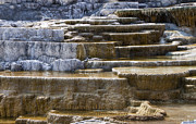Larry Keahey - Mammoth Hot Springs