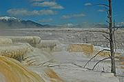Yellowstone Park Prints - Mammoth Hot Springs Terrace in Yellowstone National Park Print by Bruce Gourley