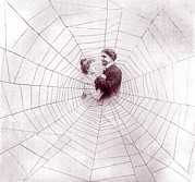 Entangled Posters - Man And Woman In Middle Of Spider Web Poster by Everett
