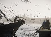 Moroccan Photos - Man Throwing Rope To People On Dockside by Axiom Photographic