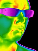 Wearing Glasses Posters - Man Wearing Sunglasses, Thermogram Poster by Tony Mcconnell