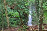 Matthew Winn - Manakiki Falls