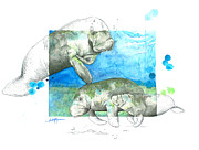Florida Mixed Media Originals - Manatee Family by Amber M  Moran