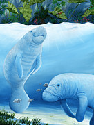 Save The Sea Turtle Paintings - Manatee Haven by Randall Brewer