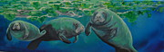 Patti Williams - Manatees