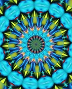 Ten Minute Art - Mandala 111511 A by David Lane