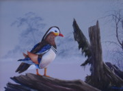Waterfowl Paintings - Mandarin Drake by Michael Allen