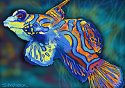 Mandarin Orange Framed Prints - Mandarin Fish II Framed Print by Stephen Anderson