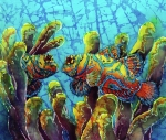 Sea Life Art - Mandarinfish  by Sue Duda
