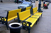 Benches Photo Originals - Manege Square 9 by Padamvir Singh