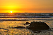 Mango Framed Prints - Mango Horizon Framed Print by Johanne Peale