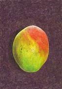Mango Drawings Metal Prints - Mango on Plum Metal Print by Steve Asbell