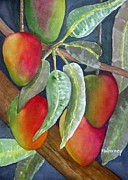 Mango One Print by Terry Arroyo Mulrooney