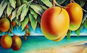 Overhang Painting Framed Prints - Mangoes by the Sea Framed Print by Barbara Eberhart - Printscapes