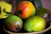 Tropical Fruit Prints - Mangos Print by Gary Dean Mercer Clark