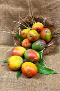 Mango Metal Prints - Mangos Metal Print by Ramnath Bhat