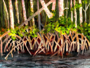 Gumbo Paintings - Mangrove at Gumbo Limbo by Donna Walsh