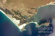 Aerial Photograph Photos - Mangroves, Dunes, And Desert On Baja by NASA/Science Source