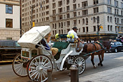 Horse And Buggy Framed Prints - Manhattan Buggy Ride Framed Print by Madeline Ellis