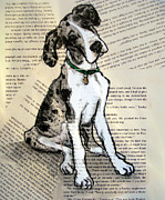 Great Painting Originals - Mantle Merle Great Dane Puppy Nora by Christas Designs