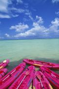 Water Play Art - Many Pink Kayaks by Dana Edmunds - Printscapes